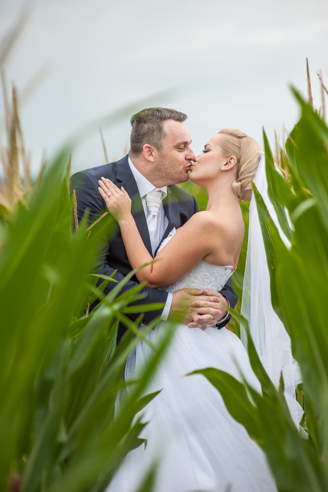Wedding ♥ - Obrázek č. 16