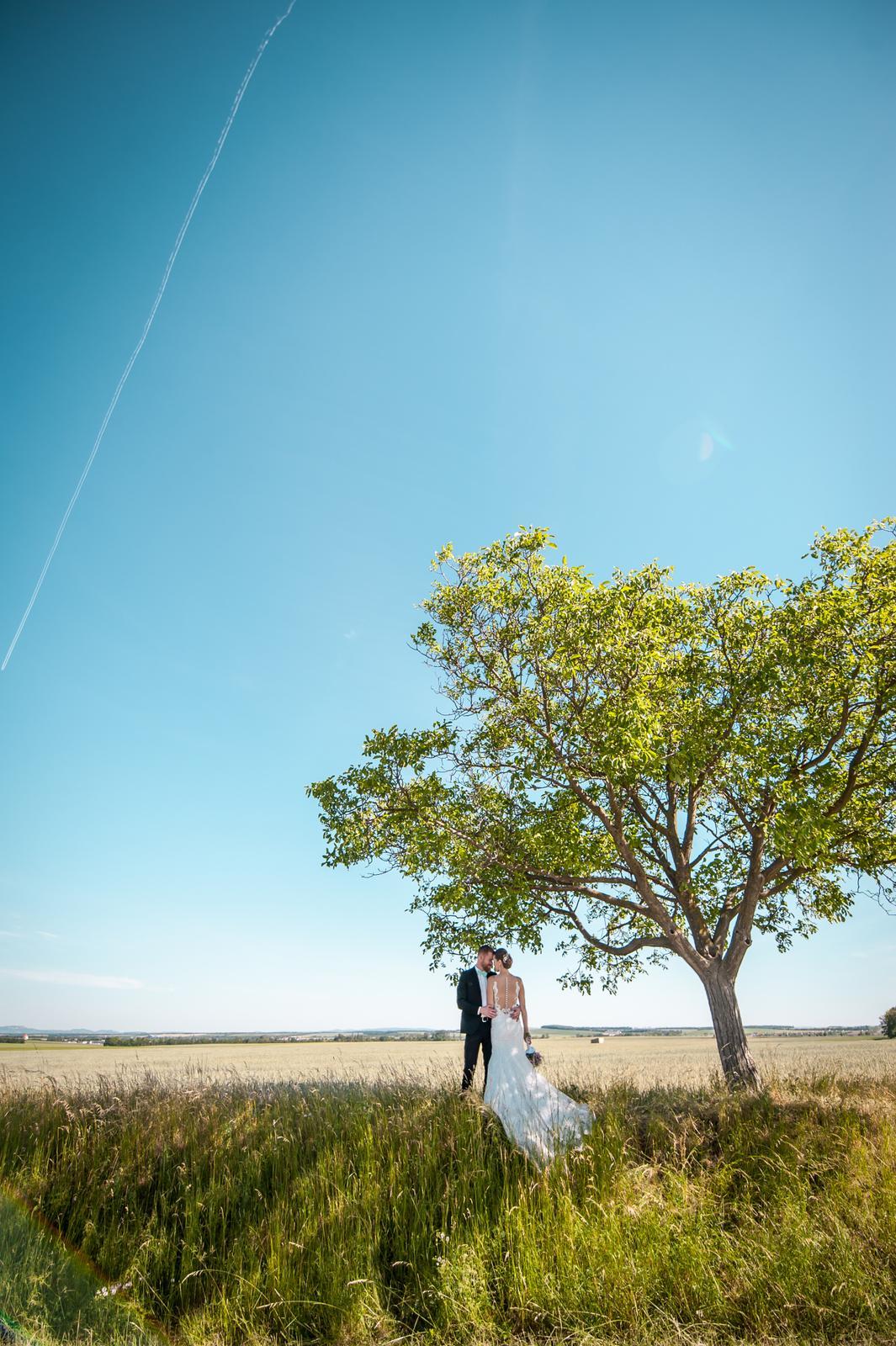 Wedding ♥ - Obrázek č. 70