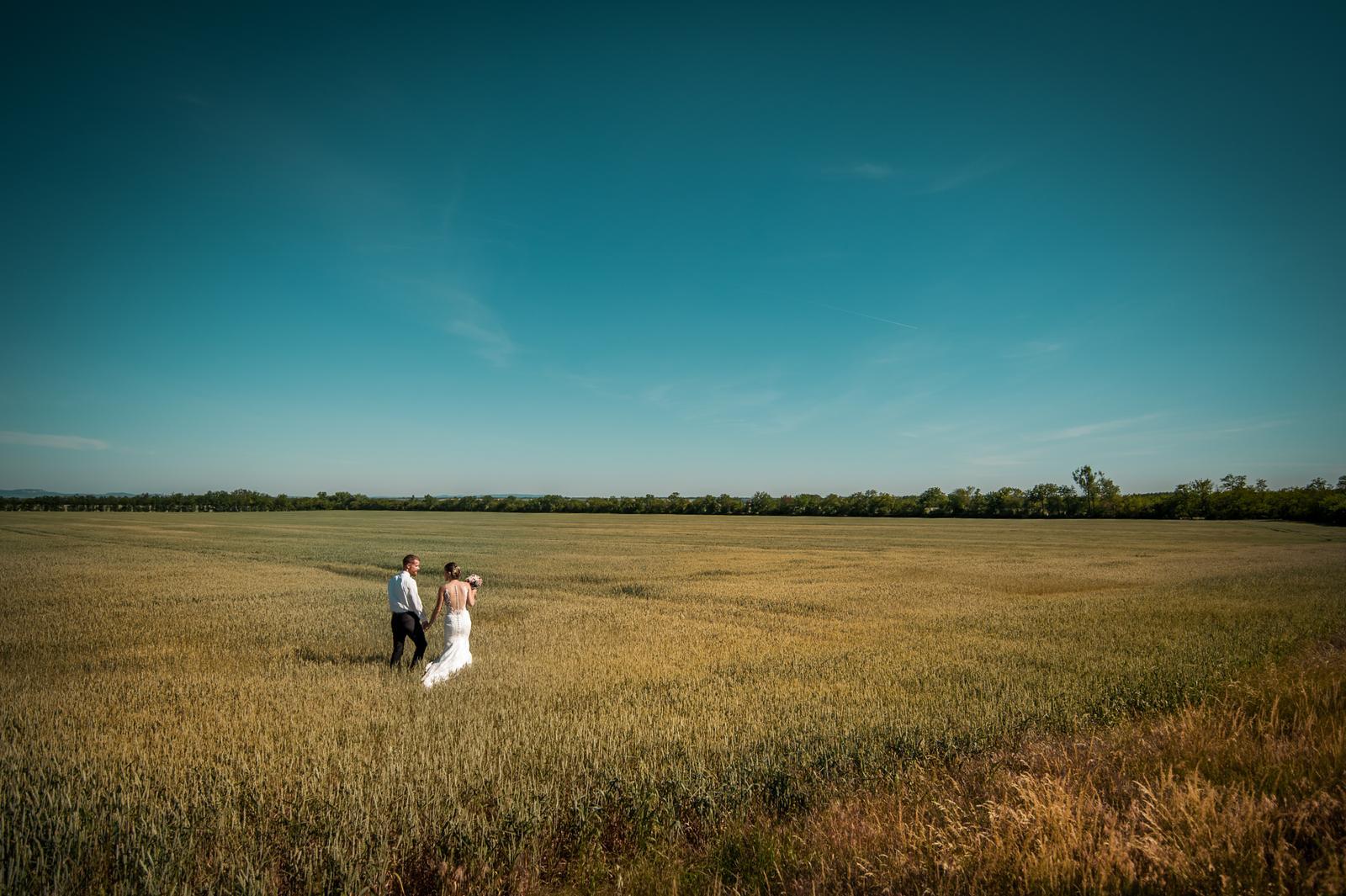 Wedding ♥ - Obrázek č. 81