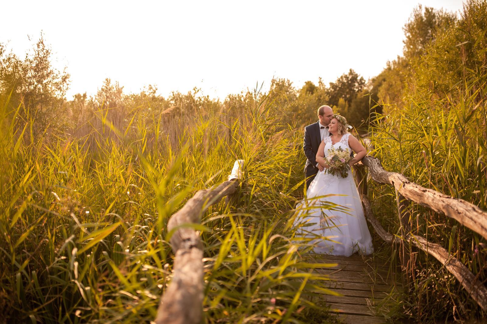 Wedding ♥ - Obrázek č. 98