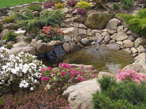 Voda v záhrade - Obrázok č. 52