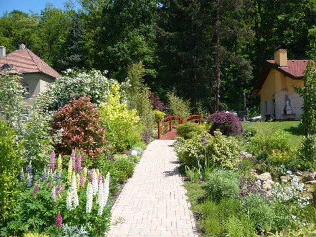 Záhrada-inšpirácie - Obrázok č. 273