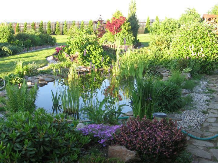 Voda v záhrade - Obrázok č. 51
