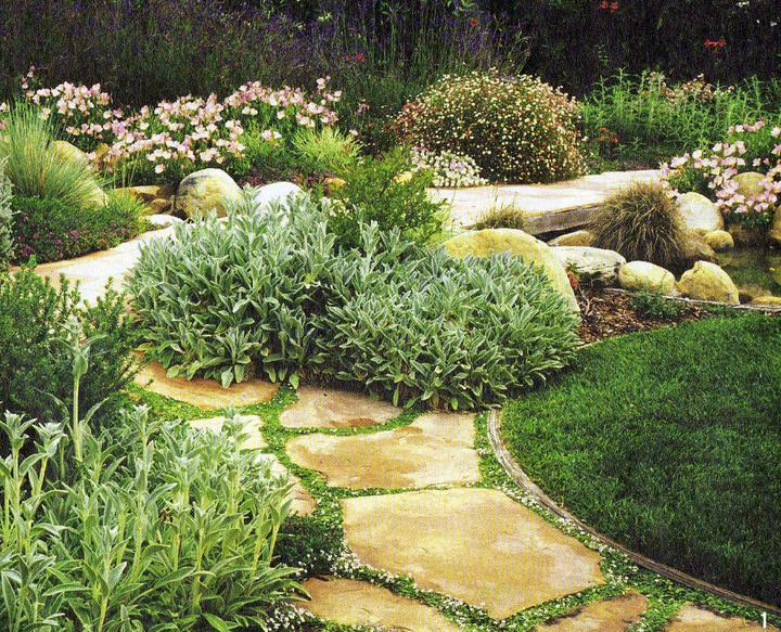 Zahrada - inspirace - Obrázek č. 72
