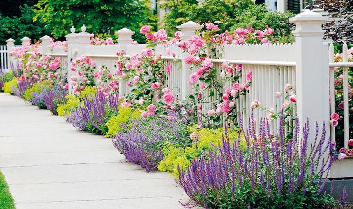 Kouzelná zahrada - Obrázek č. 8