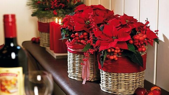 Vánoční čas - Obrázek č. 39