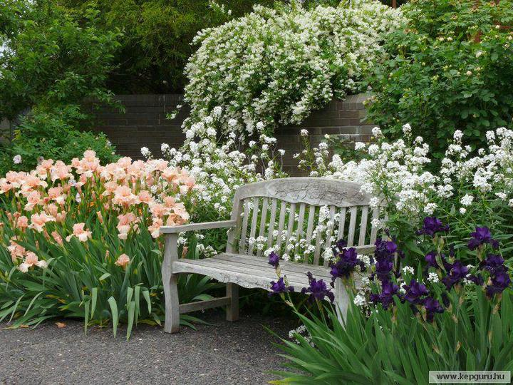 Zahrada - Lavička to je můj sen.
