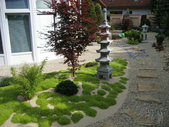 Zahrada - moje oblíbená kytička (travička)....úrazník šídlolistý, kvete celé léto