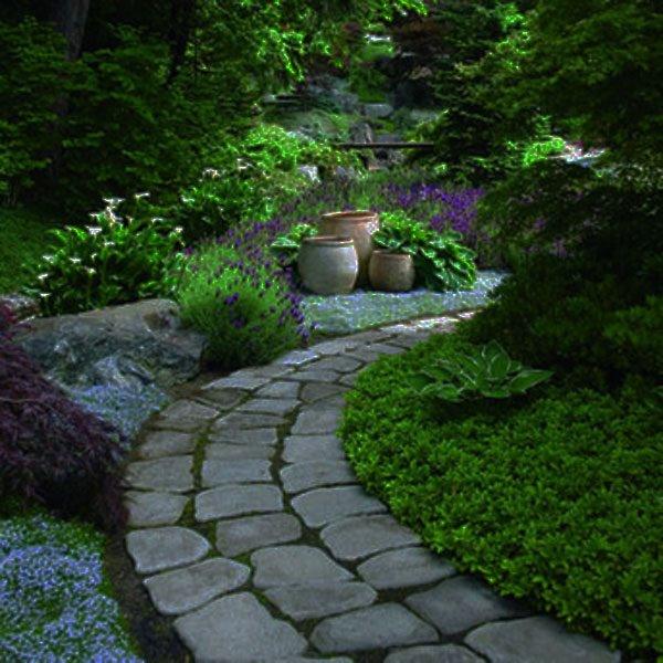 Zahrada - Obrázek č. 95