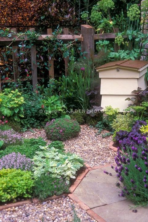 Zahrada, v hlavní roli kámen/ aneb jsem šutrofilka - Obrázek č. 40