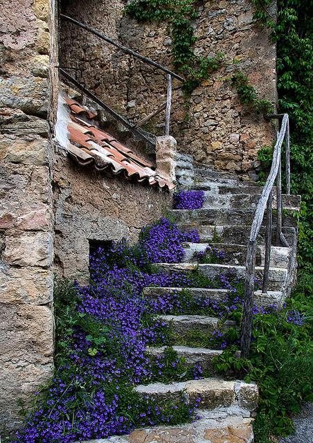 Zahrada, v hlavní roli kámen/ aneb jsem šutrofilka - Obrázek č. 56