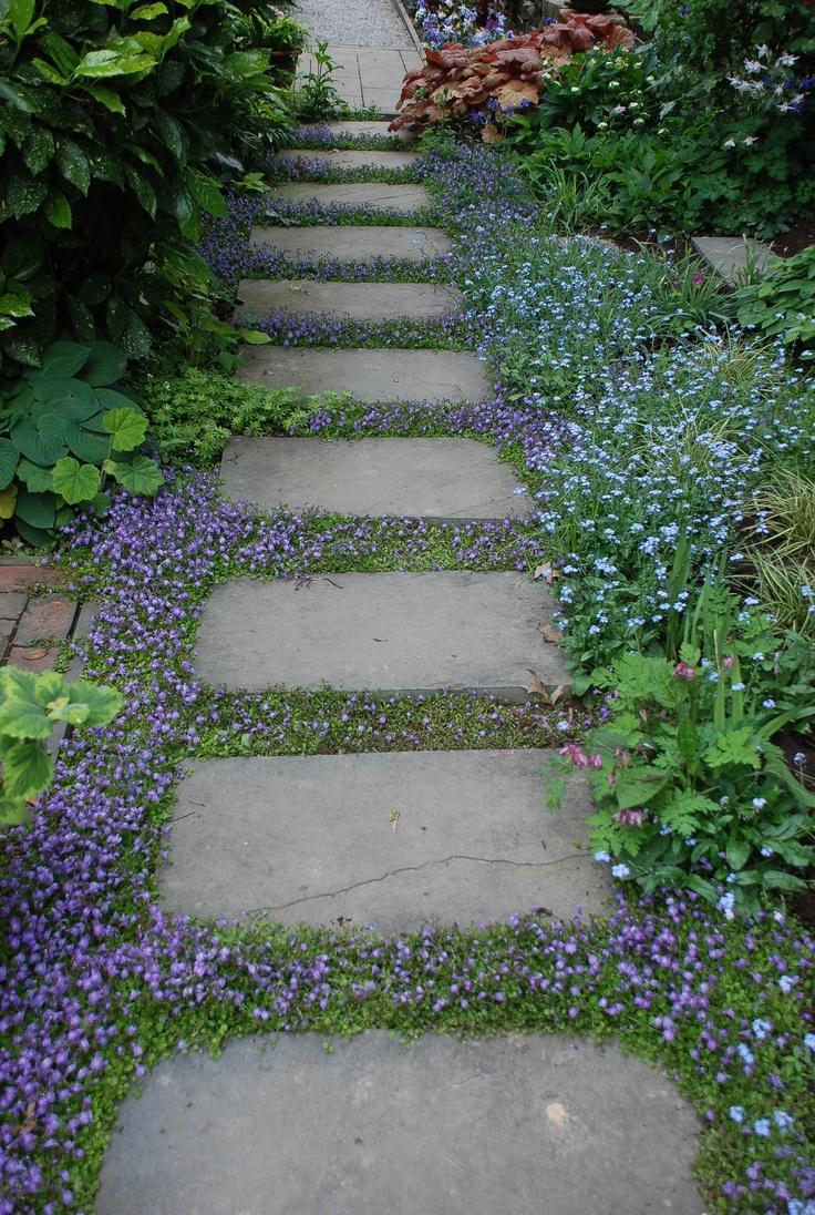 Zahrada, v hlavní roli kámen/ aneb jsem šutrofilka - Obrázek č. 63
