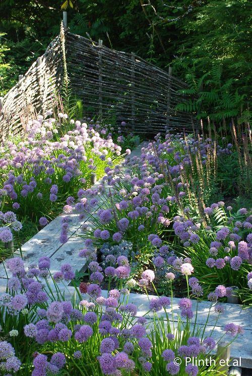 Krása v zahradách - Obrázek č. 8