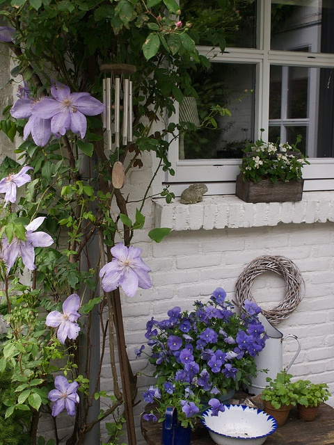 Krása v zahradách - Obrázek č. 11