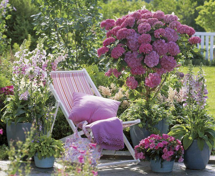 Krása v zahradách - Obrázek č. 17