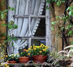 Oprýskané a přitom nádherné okno.