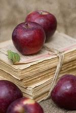 Ještě když žil děda, tyhle jablíčka jsem milovala. Musím si je pořídit.