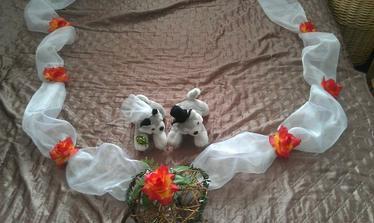 Výzdoba na auto nevěsty ... :) domácí výroba
