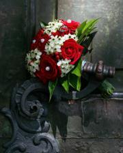 ruže-ornitogalum