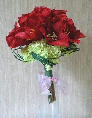 Kvetiny - amarylis