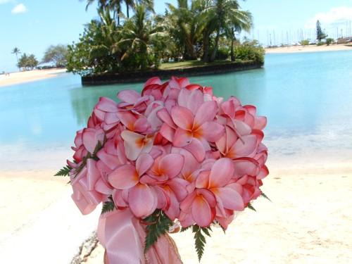 Kvetiny - Obrázok č. 4