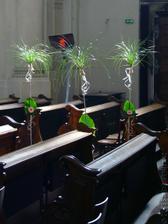 trošku extravagantní výzdoba kostela, pokud budou červené květy a trochu se to přizpůsobí ...