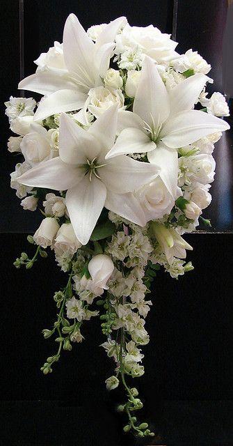 ...lilie a růže, růže a kala... - Obrázek č. 6