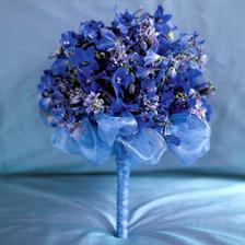 Nádherná v modrom