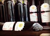 Svadobné víno s elegantnou etiketou vo vysokých tmavých fľašiach