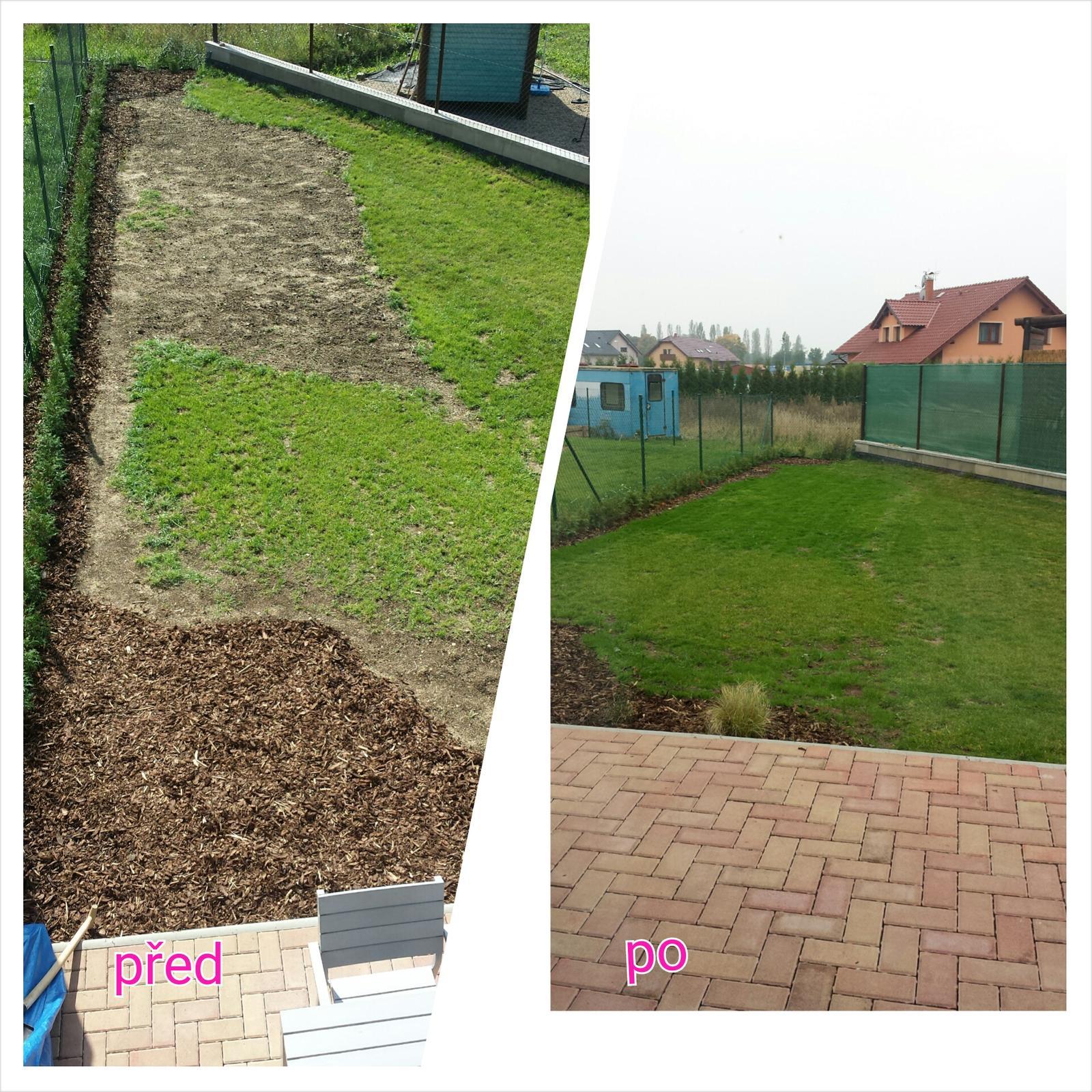 Náš šedý sen :) - Uz nam to trosku zarusta :-)  jeste chci udelat plot ale to uz asi letos nestihnem ... nechci koukat na ty sousedu hnusny zahrady :-) proc zrovna my musime mit ze všech stran takovy sousedy? :)
