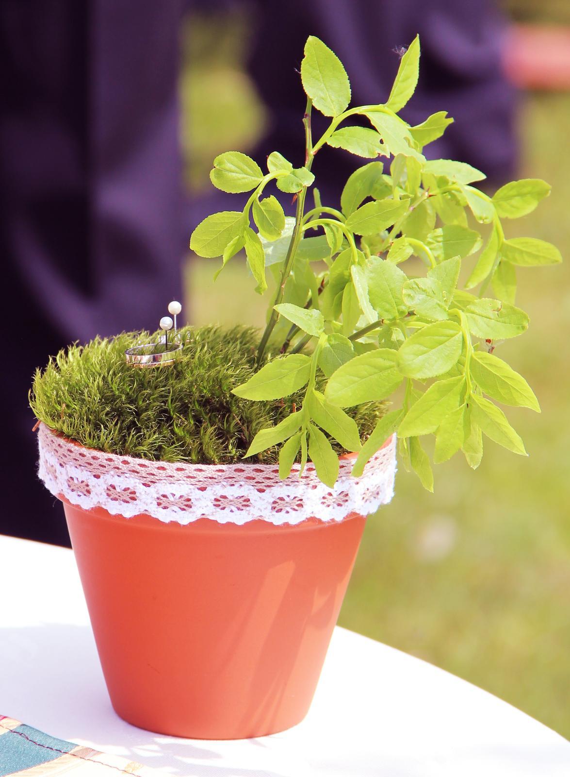 Květináč na prstýnky - Obrázek č. 1
