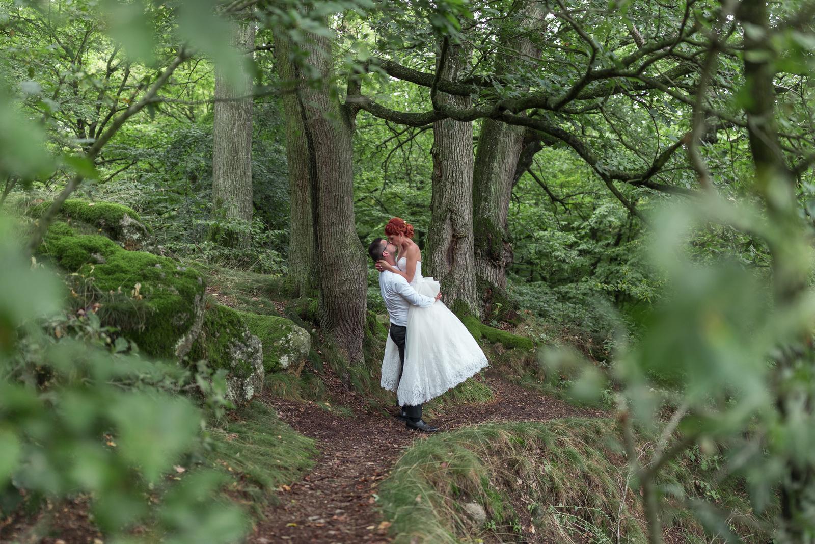 Miška & Peťo - Svadba v daždi - Obrázok č. 1