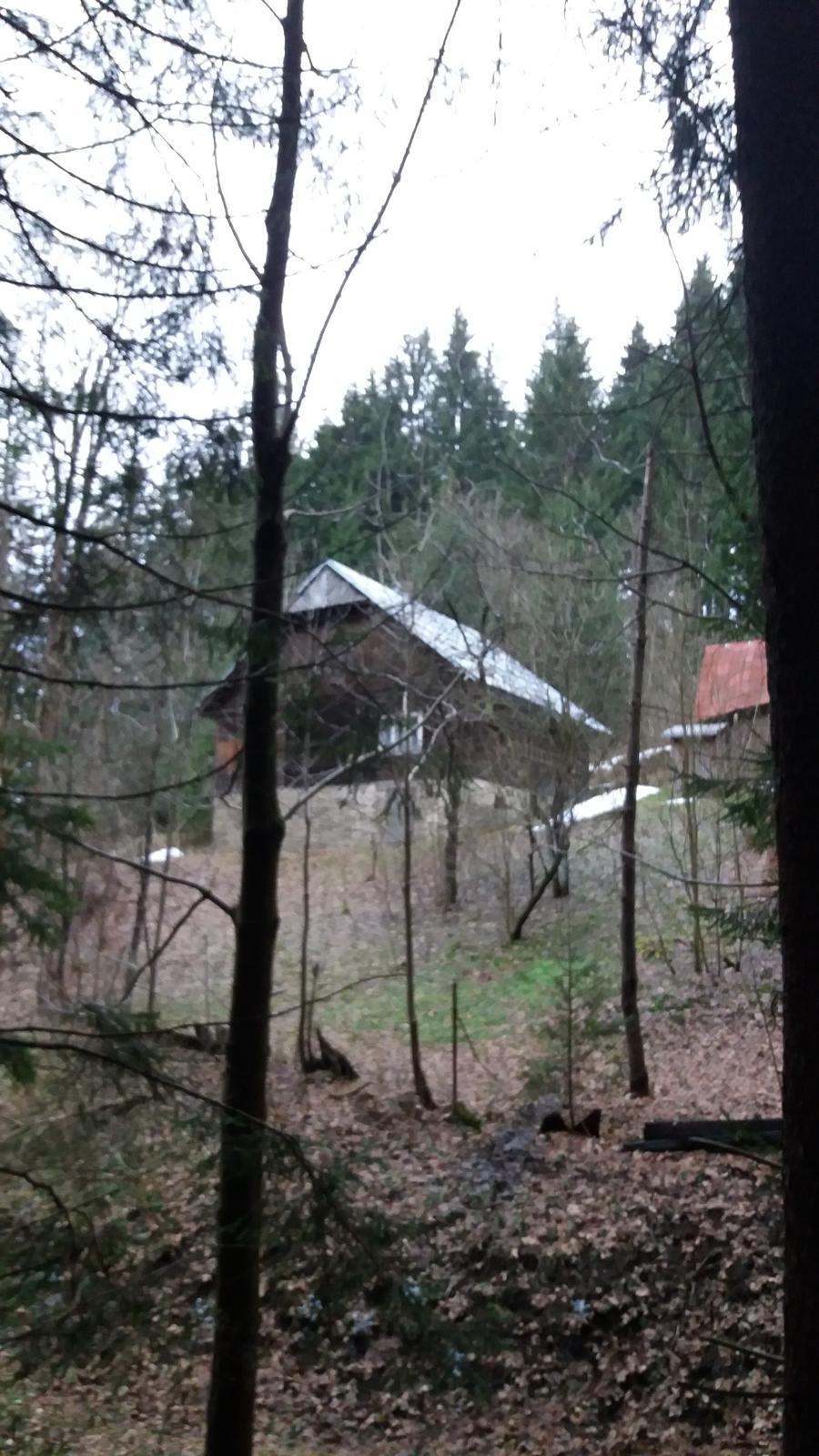 Na samote u lesa - Obrázok č. 3