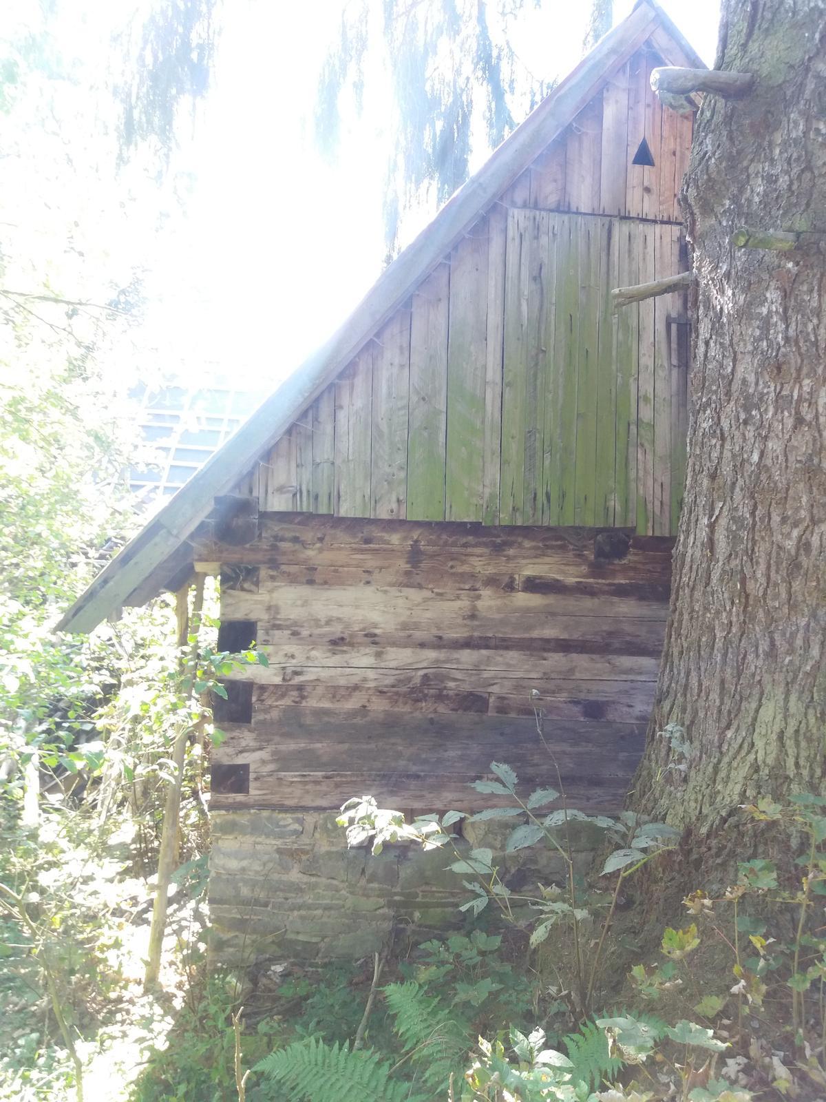 Na samote u lesa - Obrázok č. 25