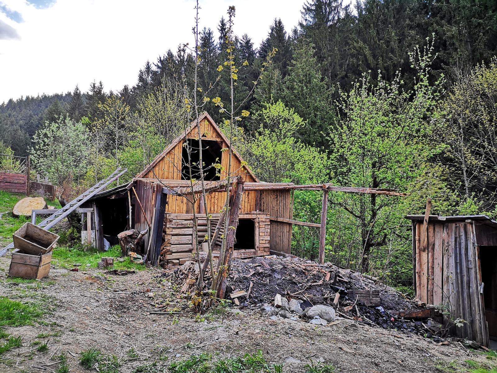 Na samote u lesa - Obrázok č. 98