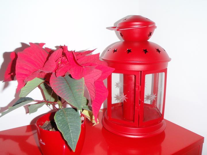 Vánoční:-) - lucerna už je doma