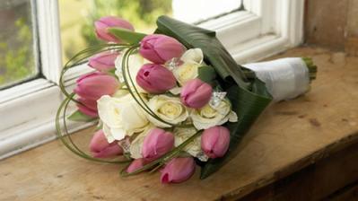 tulipany..krasa