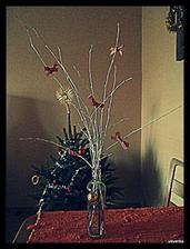 kousek našich vánoc :-)
