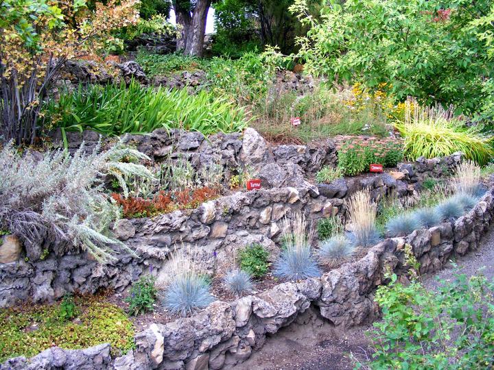Rostlinstvo, terasa a jiný exteriér - Obrázek č. 91