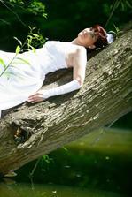 to som sa musela vystverat na strom nad vodou !!!