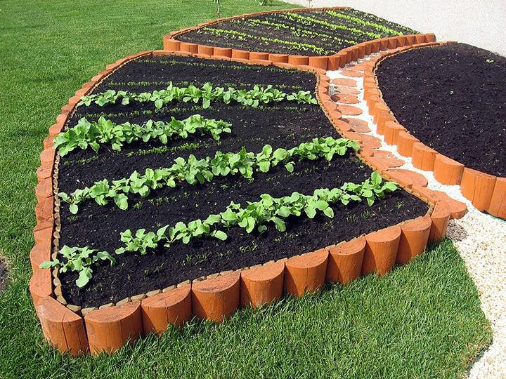 Zeleninová záhrada... - Obrázok č. 2