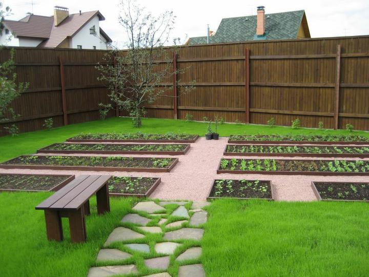 Zeleninová záhrada... - Obrázok č. 3