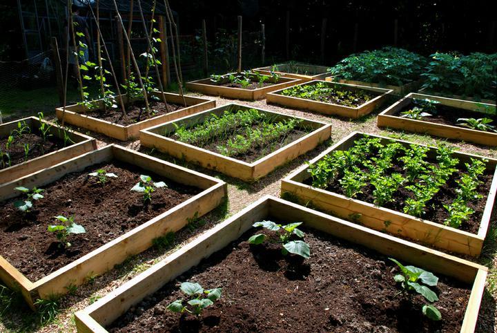 Zahradne inspiracie z netu - Obrázok č. 7