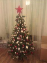 nas prvy spolocny vianocny stromcek :-)