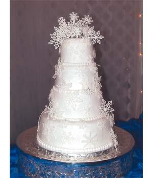 Barbora+Tomi - zimná tortička