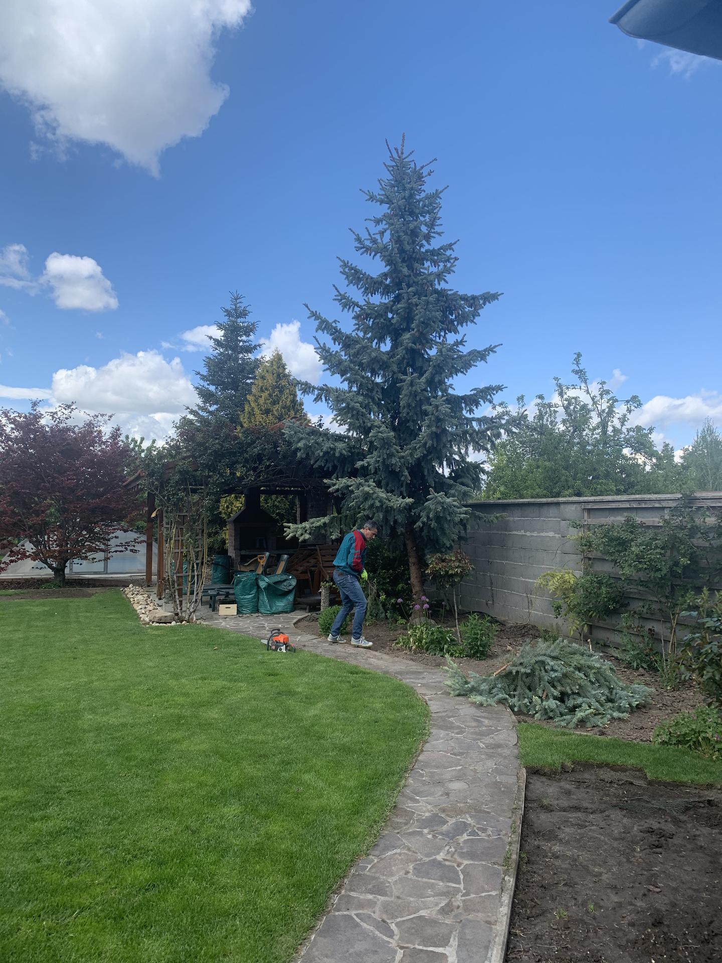 (staro) nová záhrada - Obrázok č. 3