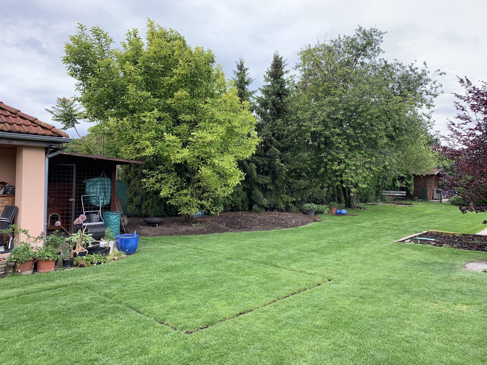 (staro) nová záhrada - Obrázok č. 20
