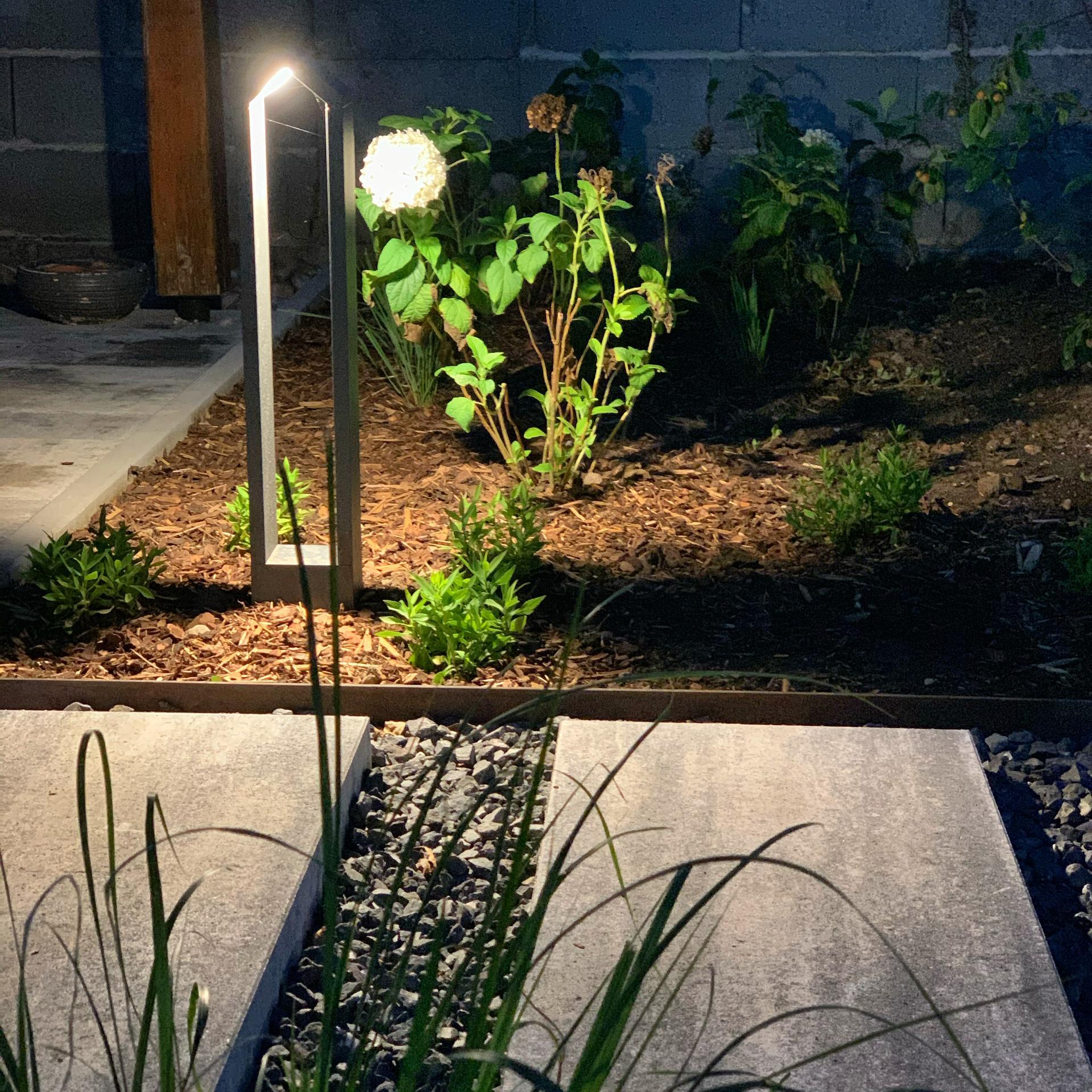 (staro) nová záhrada - Obrázok č. 65