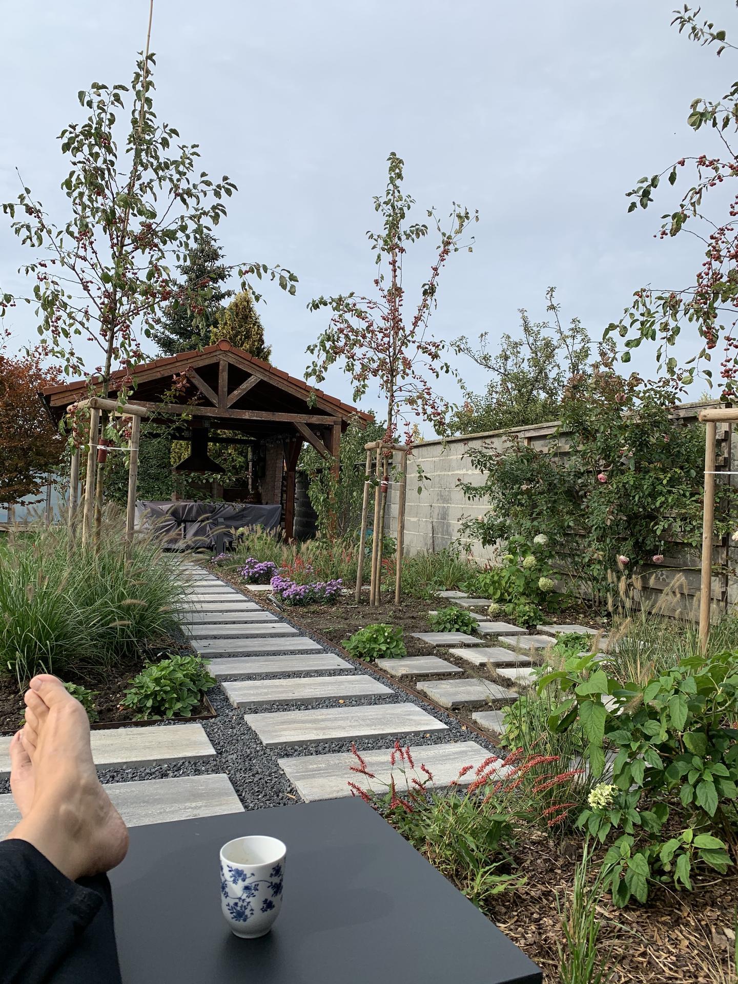 (staro) nová záhrada - Obrázok č. 73
