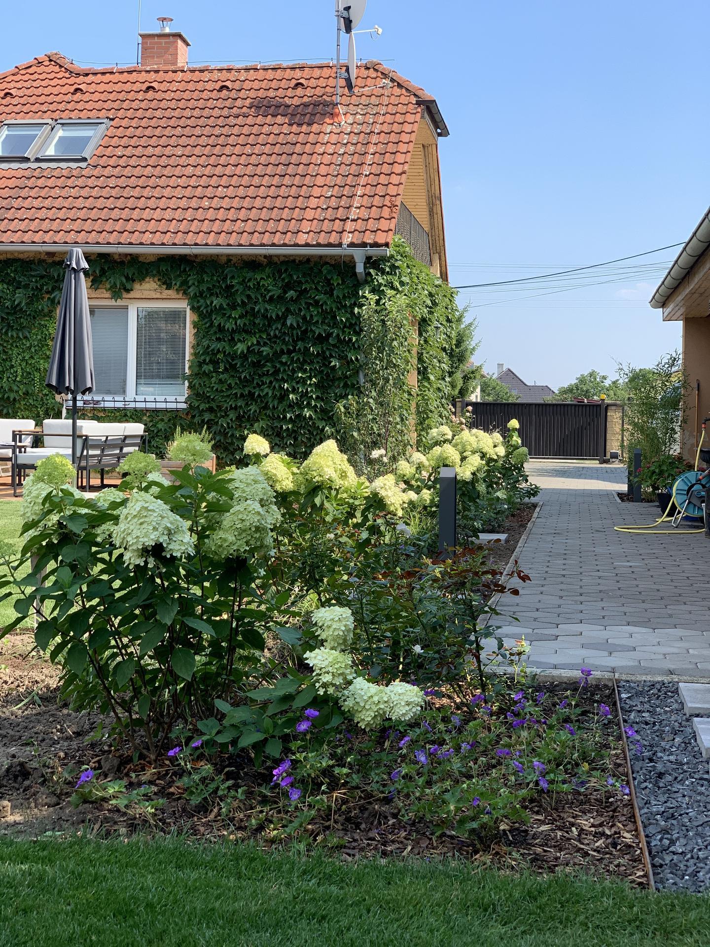 (staro) nová záhrada - Obrázok č. 63